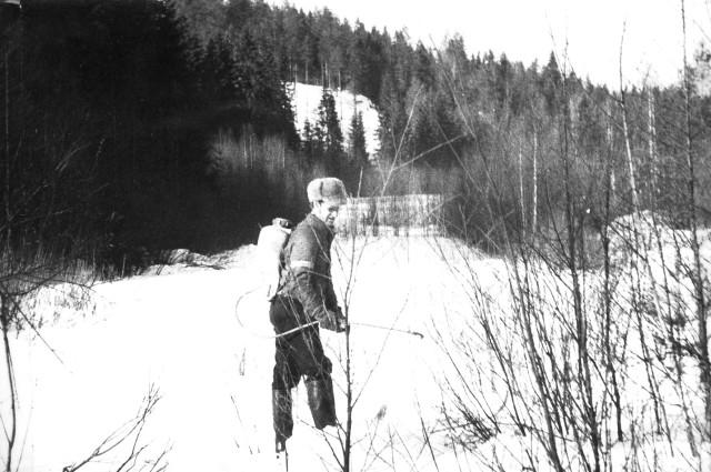 1978-13